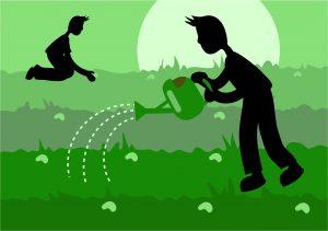 Príbeh jedného malého semiačka - ako to všetko začína?