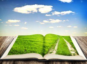 Ekologické poľnohospodárstvo