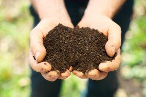 Bio kompost
