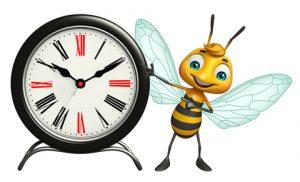 Kam miznú včely?